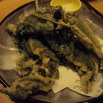 彩旬酒肴あさ井 - ウドの天ぷら