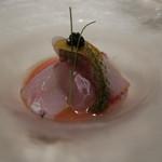 40706355 - 真鯛・キハダ・メバルのカルパッチョ 奈良大和丸茄子のタルタル ガスパチョ仕立て