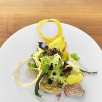 """スーパーフード""""キヌア""""や旨味を凝縮した乾燥野菜をご提供"""
