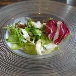ハーミットグリーンカフェ - ランチセットのサラダ