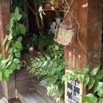 cafeゆう - 外観写真:緑に囲まれたおしゃれな入り口