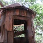 レ・グラン・ザルブル - 都会らしからぬ大樹とツリー・ハウスを併せ持つ素敵なカフェ♪4