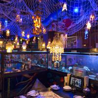 全長6mの水槽がお出迎え、幻想的な世界が広がる居酒屋
