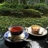 喫茶どんぐり - 料理写真:緑の庭を眺めながら