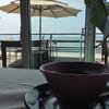 ランドシップカフェ - ドリンク写真:オーガニック珈琲