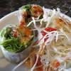 バンハオ - 料理写真:前菜の生春巻きとサラダ
