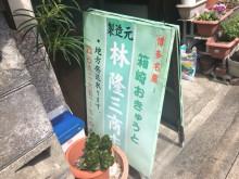 林隆三商店