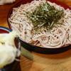辰美 - 料理写真:盛りよしのざるそばですが・・・カレ~南蛮にしましょう(^^v