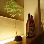 旬彩和遊 楠 - 間接照明が、雰囲気を醸します