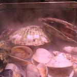 42064031 - 豪快な貝類