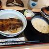本部うなぎ屋 - 料理写真:うな丼(並)1760円