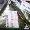 ビッグ・エー - 料理写真:塩むすび 56円!!税別