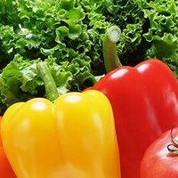 旬な野菜を炭火で・・・