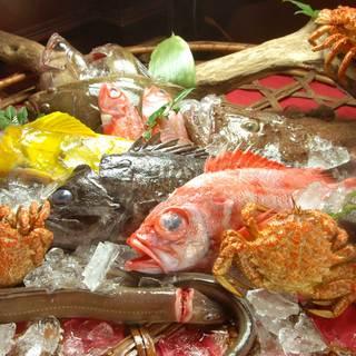 料理長厳選!対馬・石巻から毎日届く新鮮な魚介