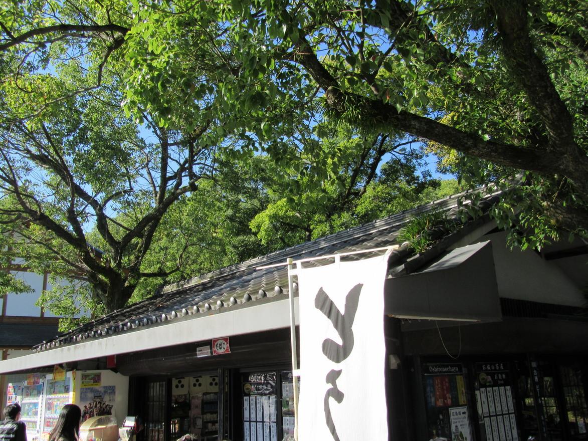 お城の茶屋 中央公園売店