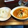 大地のめぐみ - 料理写真:スープカレー(チキンレッグ)♪