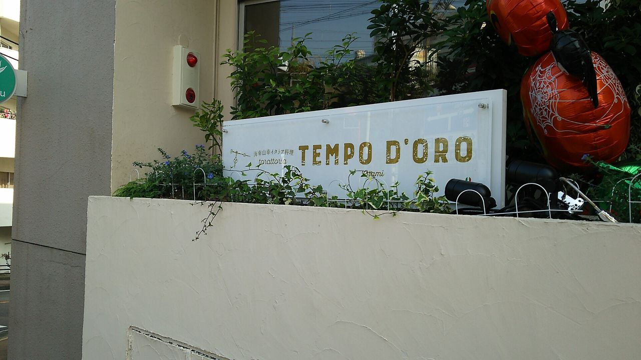 トラットリア テンポ ドーロ