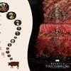 ステーキ&ハンバーグ専門店 東京壱番グリル - 外観写真:一頭買いしたのでステーキを始めてみました!