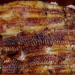 はいばら - うなぎ はいばら 築地2号店 とろける柔らかさの鰻の蒲焼