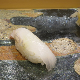 小判寿司 - 料理写真:鱸(徳島・村公一産)