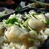 御食事処 朱鷺 - 料理写真:【2013年12月】今回は牡蠣ごはん