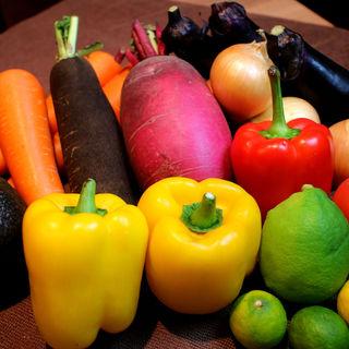 【産地直送の旬野菜】無農薬・減農薬にこだわり栄養素を壊さない