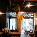 MORI-MESHI 小田原 - ~MORI-MESHI 小田原店~ 内装:大きな木がシンボルとして設置されています