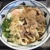 うどんの源楽 - 料理写真:とろ玉肉うどん