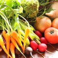 個性豊かなオーガニック野菜