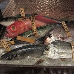 魚米 - 館山から直送の新鮮な魚