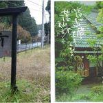 蕎仙坊 - 蕎仙坊(静岡県裾野市)食彩品館.jp撮影