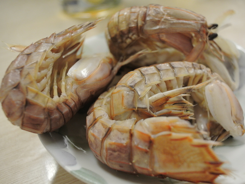 鮮魚 菜菜魚魚