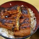 宇奈とと - 料理写真:うな丼ダブル(ご飯大盛)¥1,000