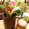ナデシコ - 料理写真:選べる3種のソース 滋賀のバーニャカウダ(¥880)