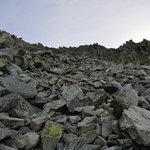 岳沢小屋 - 岩がゴロゴロしてます