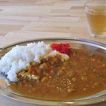 岳沢小屋 - 緑黄色野菜カレー