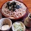 そば処 泉家 - 料理写真:ざるそば(手打ち)