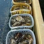 津田宇水産 - 料理写真:牡蠣