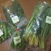 食の駅 - 料理写真:新鮮な野菜