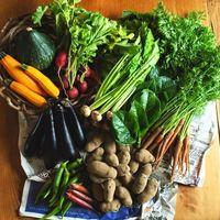 ソロモン流で話題の川田農園から産地直送の新鮮野菜