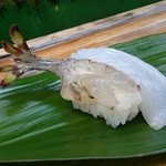 亀庄寿司 - 料理写真:車えび&いか