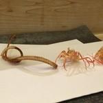 天ぷら懐石 いせ - さいまき海老と穴子の骨
