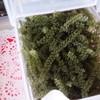 古宇利島市場 - 料理写真:海ぶどう試食用