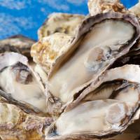 播磨灘産牡蠣の食べ放題(2時間)