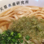 天ぷら天草水産研究所 - 日替わりセット550円のミニうどん