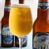 オリジナルネパールビール〜ムスタンビール〜飲み放題