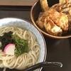 ていねのうどん屋さん - 料理写真:ランチセット うどん普通盛りと本日の天丼