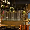 Bacci - 内観写真:笹岡周平氏のデザインと多肉植物のコラボ