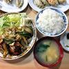 山よ飯店 - 料理写真:鶏肉の甘酢風定食(大盛り)(2016年2月)