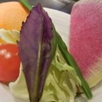 47702303 - 新鮮野菜;アップ